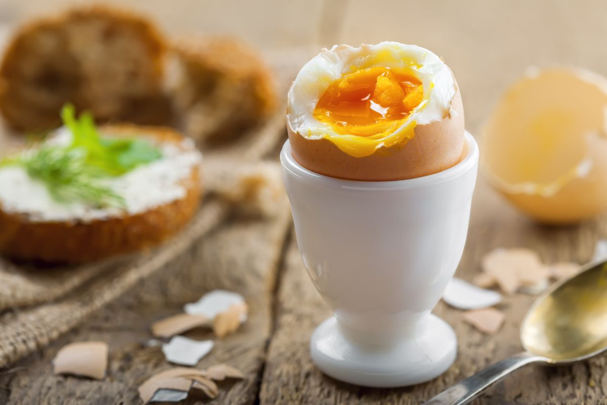 Ou fiert moale, în suport, spart pe jumătate, pe masă alături de sandwich-uri, la micul-dejun.