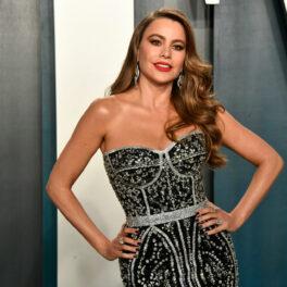 Sofia Vergara pozează pe covorul roșu la Vanity Fair îmbrăcată într-o rochie gri mulată cu un decolteu generos