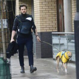 Kit Harington la plimbare cu copilul și câinele