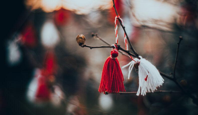 Șnurul bicolor de mărțișor, agățat de creanga unui copac înmugurit