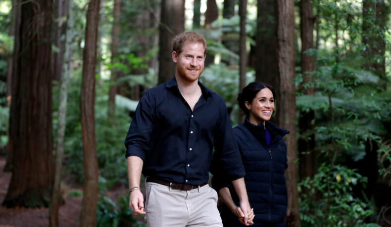 Prințul Harry și Meghan Markle la o plimbare prin pădure ținându-se de mână