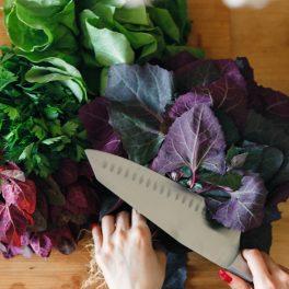 Lobodă roșie, salată verde și leuștean