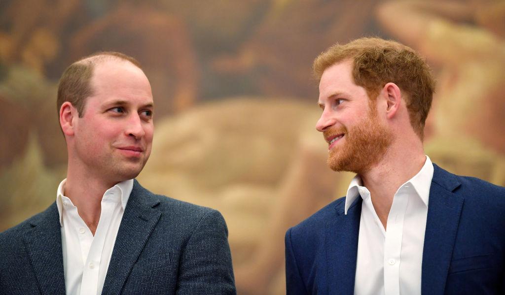 Prințul Harry și Prințul William, împreună, la evenimentul de deschidere al unei săli de sport