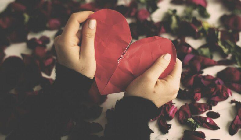 Inimă roșie de hârtie, rupăt în două de mâinie unei femei, pe un fundal de flori de trandafiri veștejite
