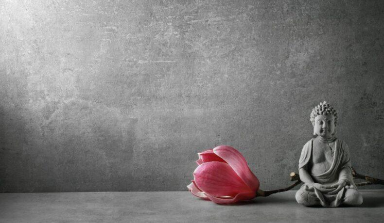 O statuie a unui Budha ce meditează, alături de o floarea mov a unei magnolii, pe un fundal gri