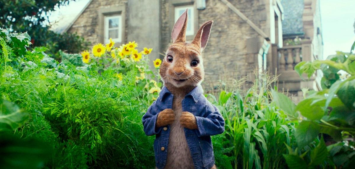 O grădină verde, cu un iepuraș care poartă o geacă albastră în scena dintr-unul din cele 5 filme de animație intitulat Peter Rabbit 2