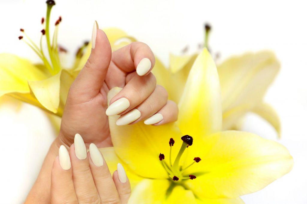 maini cu o manichiură în formă ovală și o culoare albă care stau sprijinite de un crin galben care să te ajute cum să alegi forma ideală pentru unghii
