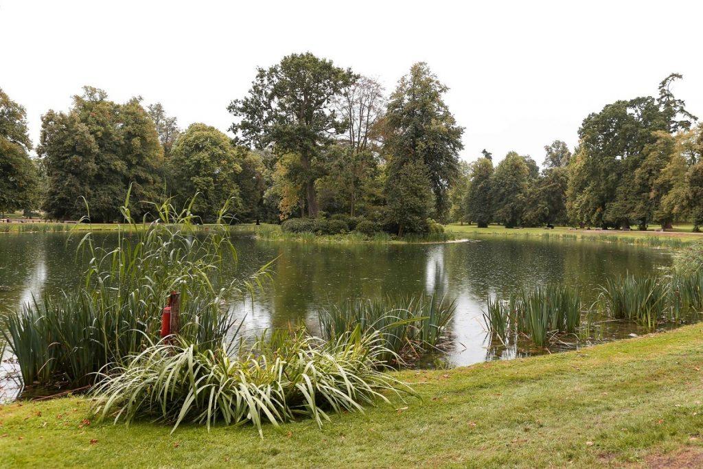 Peisaj plin de verdeață cu un lac și o insulă unde se află mormântul Prințesei Diana pe proprietatea familiei Spencer, casa Althorp