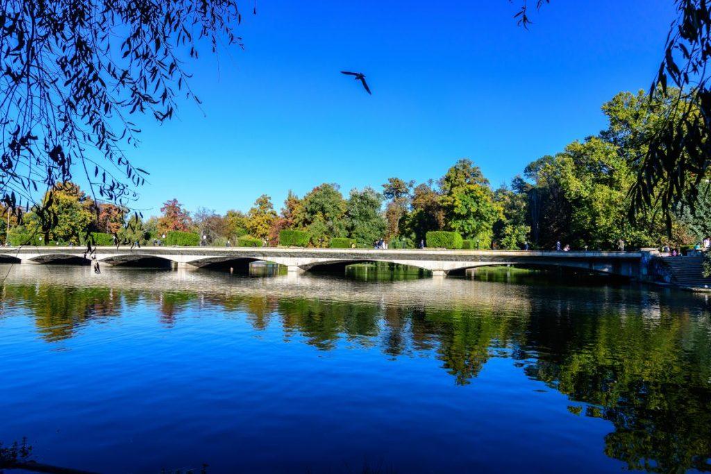 Pod deasupra lacului din Parcul Carol