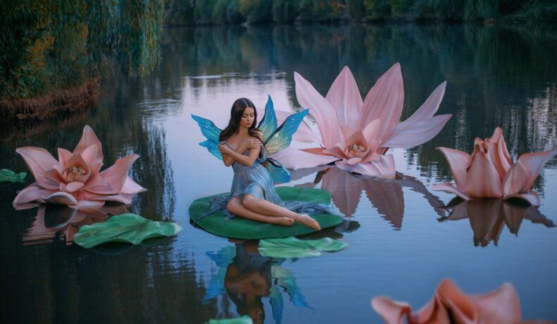 O zână frumoasă cu aripi albastre în timp ce stă pe o frunză de nufăr pe un lac și este înconjurată de flori roz de nufăr