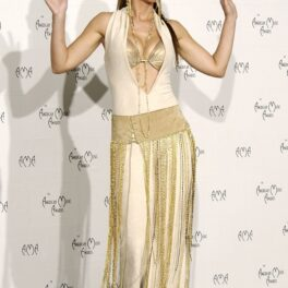 Shania Twain a participat la American Music Awards, îm 2003, într-o ținut alb cu auriu. Pe covorul roșu, cu alb pe fundal